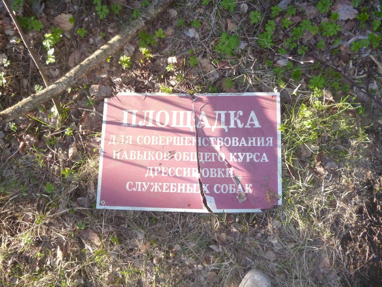 http://sd.uploads.ru/kEsaW.jpg