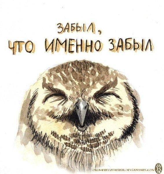 http://sd.uploads.ru/kaq7t.jpg