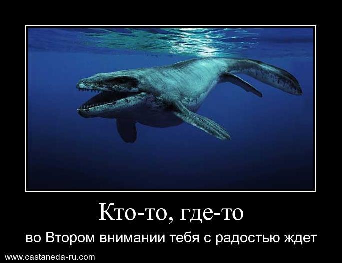 http://sd.uploads.ru/kxN9X.jpg