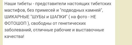 http://sd.uploads.ru/mPrne.png