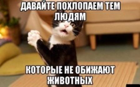 http://sd.uploads.ru/nwAST.jpg