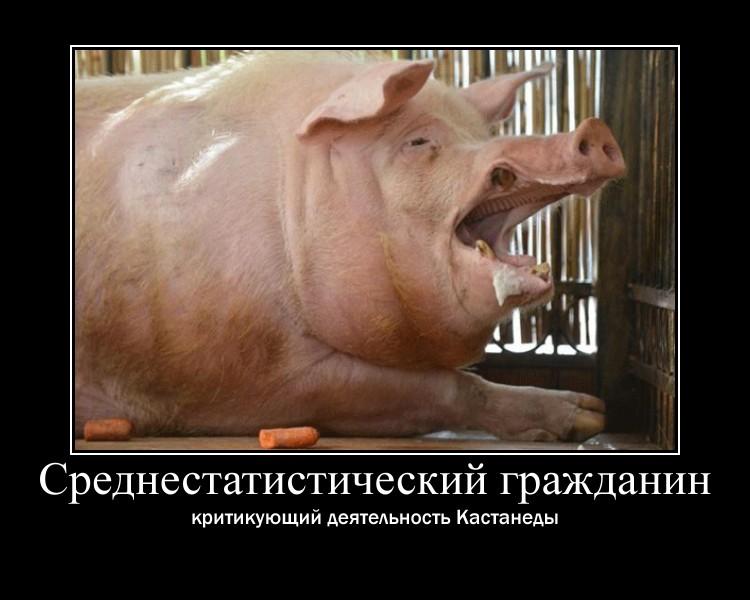 http://sd.uploads.ru/oEhXk.jpg