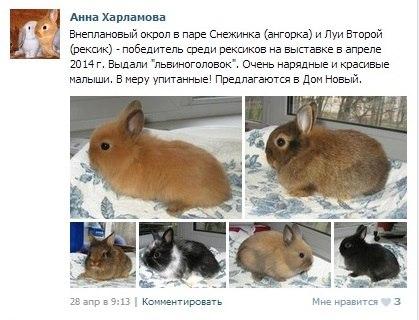 http://sd.uploads.ru/oMT9t.jpg