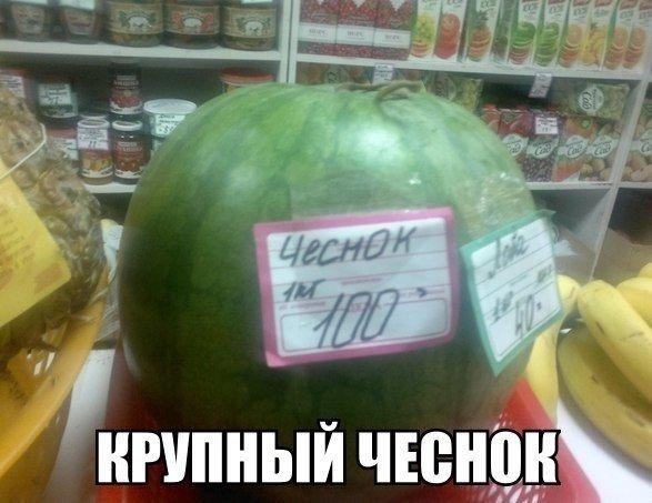 http://sd.uploads.ru/qE7dk.jpg