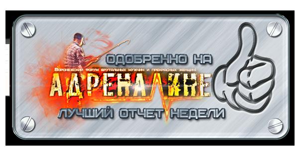 http://sd.uploads.ru/rakml.png