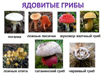 http://sd.uploads.ru/t/03tFV.jpg