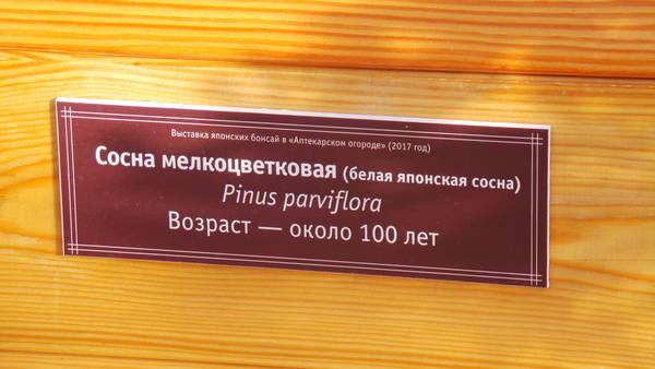 http://sd.uploads.ru/t/0KmOE.jpg