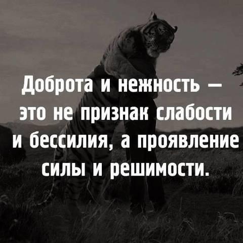 http://sd.uploads.ru/t/0d9wB.jpg