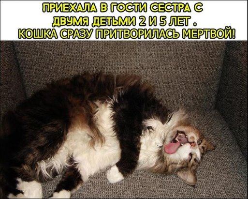http://sd.uploads.ru/t/0iahC.jpg