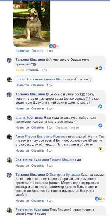 http://sd.uploads.ru/t/19Z8A.png