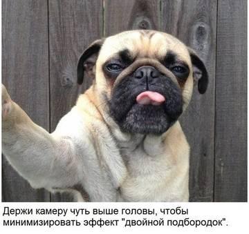 http://sd.uploads.ru/t/21rOZ.jpg