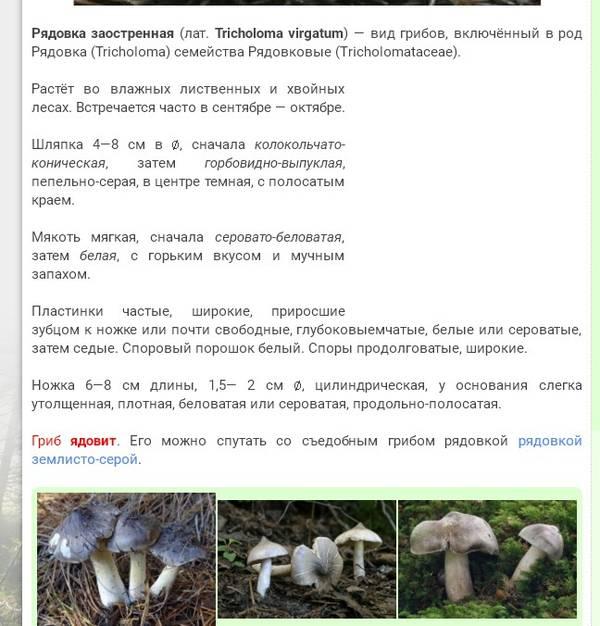 http://sd.uploads.ru/t/2FdHh.jpg
