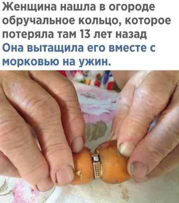 http://sd.uploads.ru/t/2QPRE.jpg