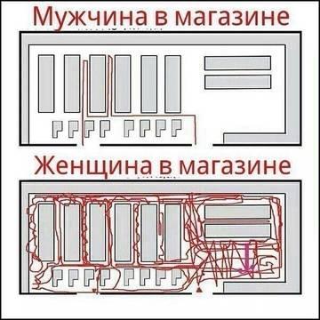 http://sd.uploads.ru/t/35bvu.jpg