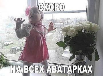 http://sd.uploads.ru/t/39e0F.jpg