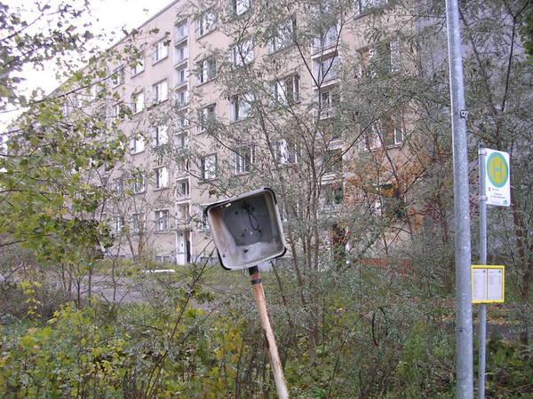 http://sd.uploads.ru/t/3IM75.jpg