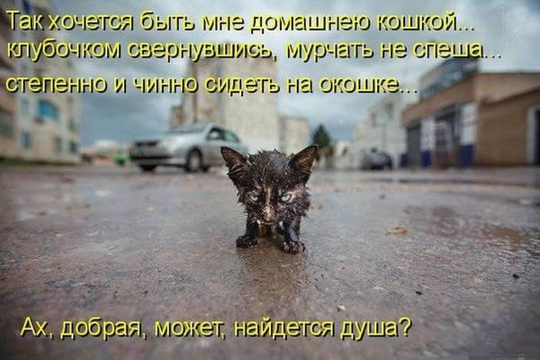 http://sd.uploads.ru/t/3WPw4.jpg