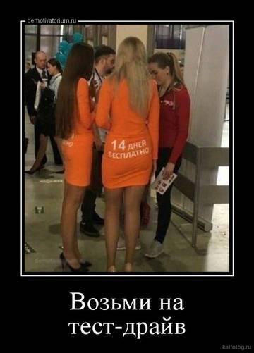 http://sd.uploads.ru/t/3fBsC.jpg