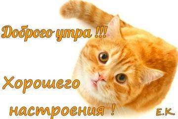 http://sd.uploads.ru/t/487ay.jpg