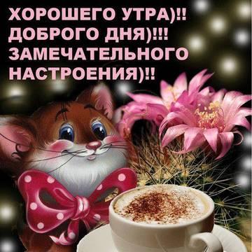 http://sd.uploads.ru/t/4cQJh.jpg