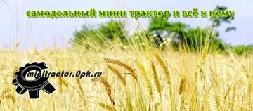 http://sd.uploads.ru/t/5Eb2l.jpg