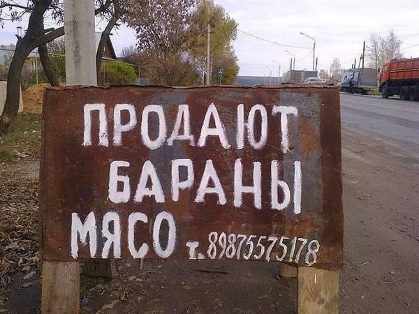 http://sd.uploads.ru/t/5WsiN.jpg