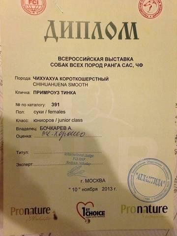 http://sd.uploads.ru/t/5nZOy.jpg
