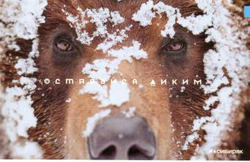 http://sd.uploads.ru/t/6E3Q4.jpg