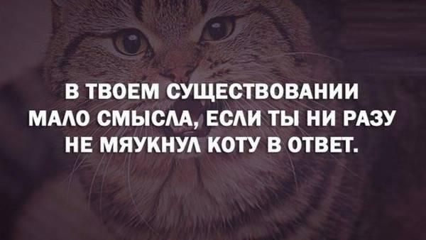 http://sd.uploads.ru/t/6tR19.jpg