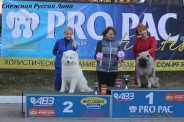 http://sd.uploads.ru/t/7C48l.jpg