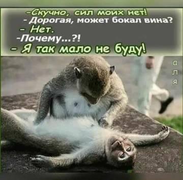 http://sd.uploads.ru/t/8vd04.jpg