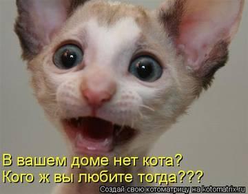 http://sd.uploads.ru/t/95YmH.jpg