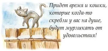 http://sd.uploads.ru/t/9mlEo.jpg
