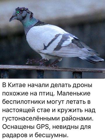 http://sd.uploads.ru/t/9nT3a.jpg