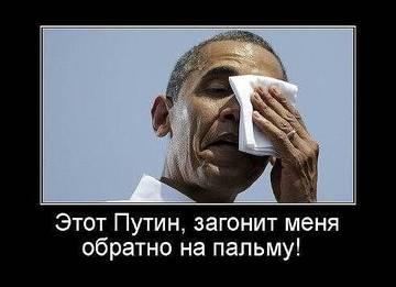 http://sd.uploads.ru/t/ASdHJ.jpg