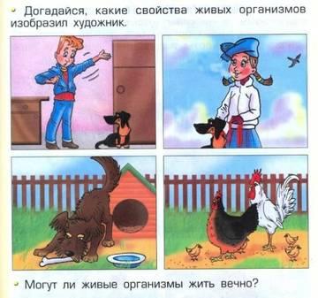 http://sd.uploads.ru/t/AdKml.jpg