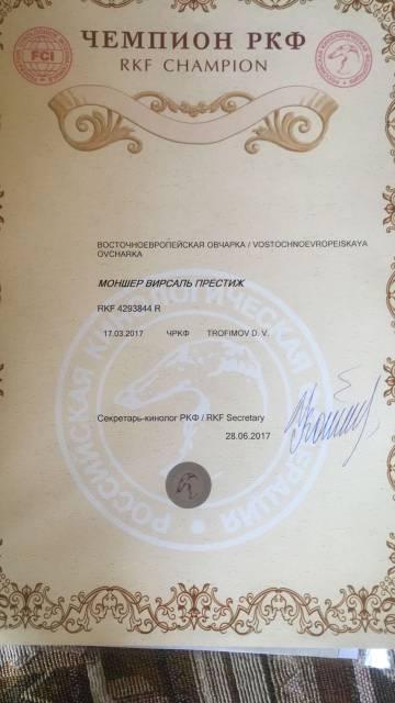 http://sd.uploads.ru/t/Av1fp.jpg