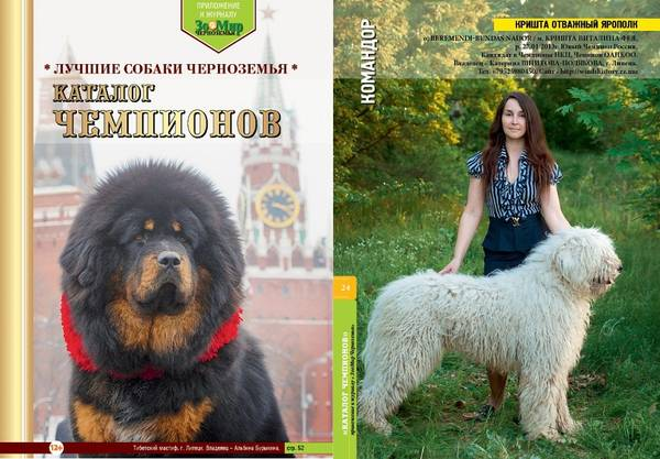 http://sd.uploads.ru/t/BcHsz.jpg