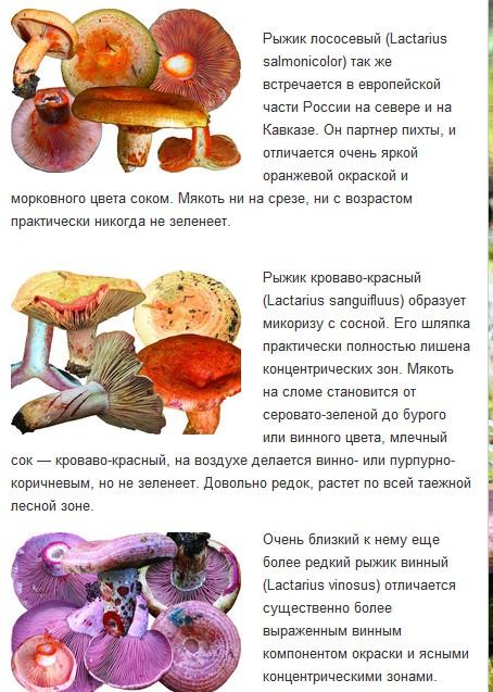 http://sd.uploads.ru/t/Bl3F1.jpg