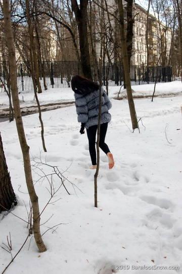 http://sd.uploads.ru/t/C3QuY.jpg