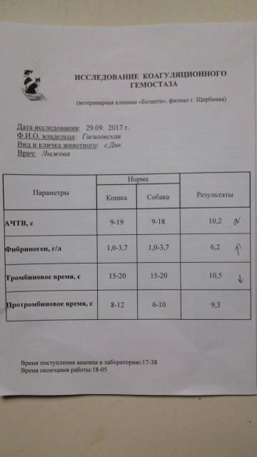 http://sd.uploads.ru/t/CAisn.jpg