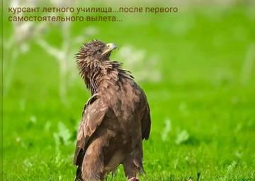 http://sd.uploads.ru/t/CXjzb.jpg