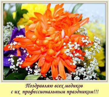 http://sd.uploads.ru/t/DPZcq.jpg