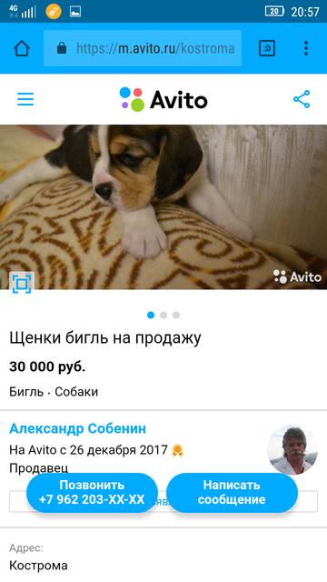 http://sd.uploads.ru/t/EQD21.png