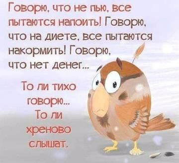 http://sd.uploads.ru/t/Efqja.jpg