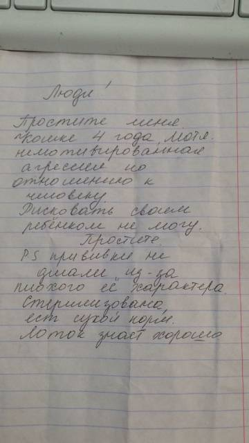 http://sd.uploads.ru/t/ErFMd.jpg