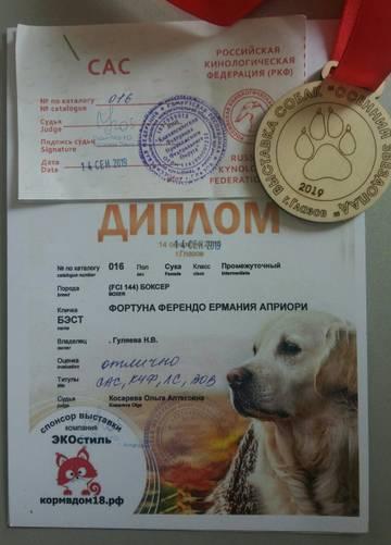 http://sd.uploads.ru/t/Erohc.jpg