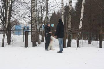 http://sd.uploads.ru/t/EtLGw.jpg