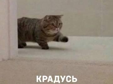 http://sd.uploads.ru/t/FbPGz.jpg