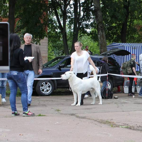 http://sd.uploads.ru/t/FjbNB.jpg